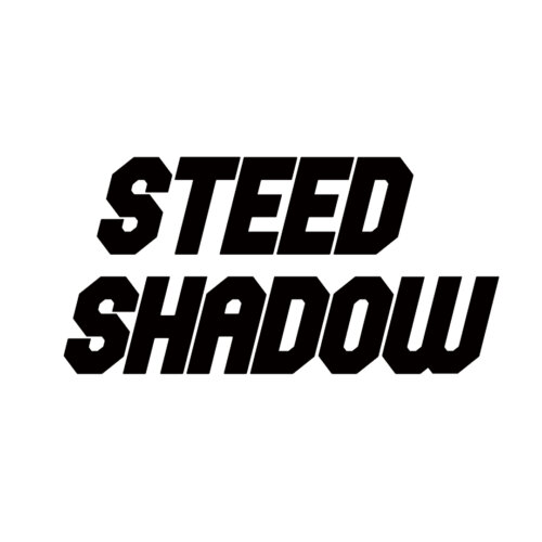 STEED SHADOW VT600 VT400 VLX400 VLX600
